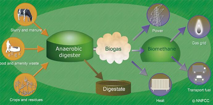 biomass biogas process diagram